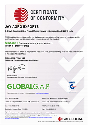 Welcome to Jay Agro-Export